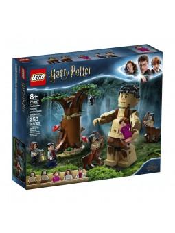LEGO® Harry Potter Bosque...